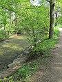 Bad Krozingen - Kurpark - panoramio - Baden de (2).jpg