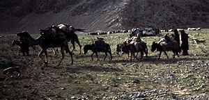 Environmental impact of reservoirs - Image: Baluch Nomads