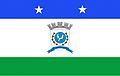 Bandeira São Jorge do Patrocínio.jpg