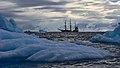 Bark Europa 20120124 173713.jpg