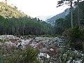 Barranc de la Vall P1070587.JPG