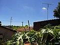 Bauru - SP - panoramio (10).jpg