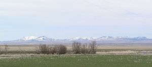 Bears Paw Mountains - Bears Paw Mountains as seen from near Virgelle, Montana