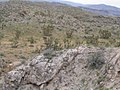 Beaver Dam Mountains, Between St. George, Utah and Mesquite, Nevada (92977506).jpg