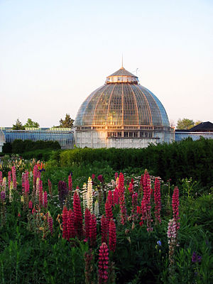 Belle Isle Conservatory - Image: Belle Isle Whitcomb Conservatory