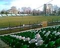 Biało - zielony Stadion Radomiaka - panoramio.jpg