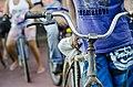 Bicicleta Caiçara.jpg