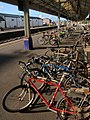 Bicycles, St David's station, Exeter - geograph.org.uk - 998074.jpg