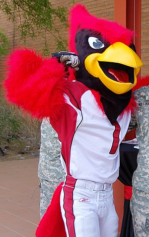 History of the Arizona Cardinals - Big Red, the Cardinals team mascot, at the team's headquarters in 2009.