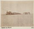 Bild från familjen von Hallwyls resa genom Egypten och Sudan, 5 november 1900 – 29 mars 1901 - Hallwylska museet - 91674.tif