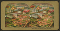 Bird's view, World's Fair, St. Louis, from Robert N. Dennis collection of stereoscopic views 3.png