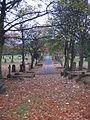 Blackhill Cemetery - geograph.org.uk - 74475.jpg