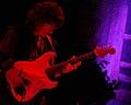 Blackmore 2009 2.jpg