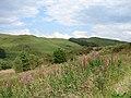 Blaen Llywernog viewed from Bwlch Nany-yr-arian - geograph.org.uk - 901455.jpg