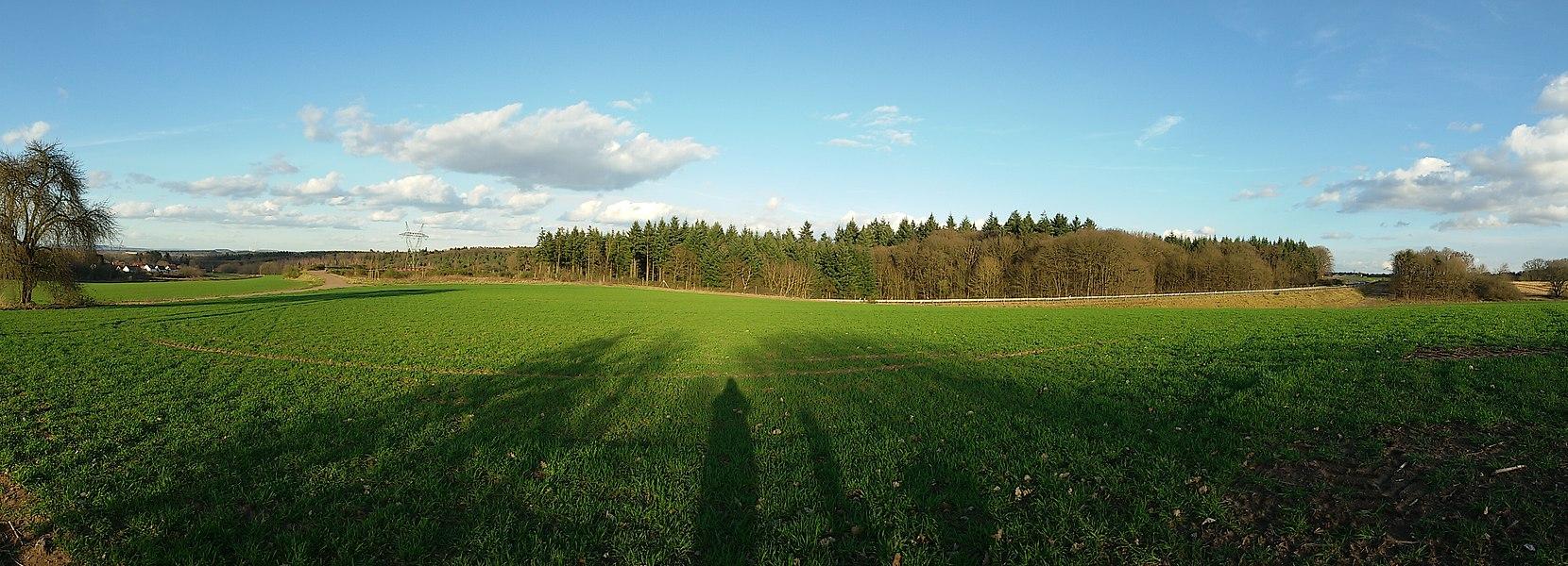 Blick zum Überherrner Wald