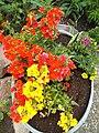 Blumenkübel - panoramio.jpg