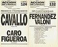 Boleta electoral 1999 - Acción por la República - Cavallo-Figueroa.jpg