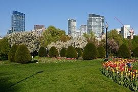Boston Public Garden May 2018 011.jpg