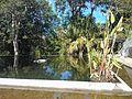 Botanical Garden, Puerto de la Cruz 02.jpg
