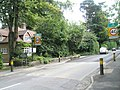 Boundary- Grayshott-Hampshire over into Hindhead-Surrey - geograph.org.uk - 931273.jpg