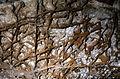 Boxwork-in-Wind-Cave-285-pix.jpg