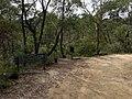 Braeside Trail - panoramio (1).jpg
