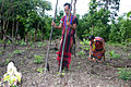 Brao Couple Planting Food.JPG