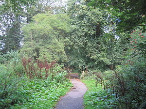Brent Park (Hendon) - Path in Brent Park