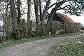 Bridleway towards Ashford Hill - geograph.org.uk - 1222359.jpg