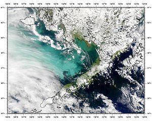 Satellitenbild der Bristol Bay