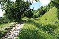 Brockham Quarry - geograph.org.uk - 855549.jpg