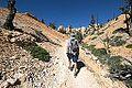 Bryce Canyon (15201826298).jpg