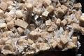 Bultfonteinite, poldevaartite 7100.3008.jpg