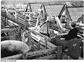 """Bundesarchiv Bild 183-34168-0004, IV. LPG-Konferenz, Landwirtschaftliche Produktionsgenossenschaft """"Wilhelm Pieck"""" Weißenschirmbach, Krs. Querfurt.jpg"""