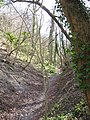 Byway on County Boundary - the Holloway gets even deeper - geograph.org.uk - 1240790.jpg