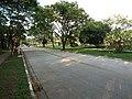 C42 - panoramio.jpg