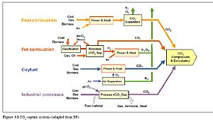 A chart of the carbon capture and sequestratio...