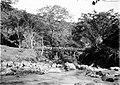 COLLECTIE TROPENMUSEUM Brug over de rivier Setro te Salatiga Midden-Java TMnr 10007669.jpg