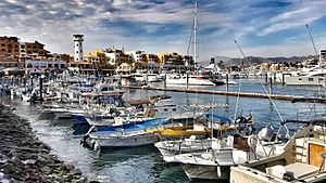 Cabo San Lucas - A sizeable marina dominates the port of Cabo San Lucas