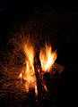 Campfire and sparks in Anttoora 6.jpg