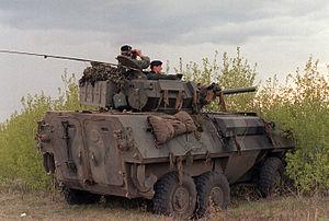 AVGP - Cougar