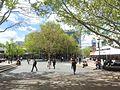 Canberra ACT 2601, Australia - panoramio (111).jpg