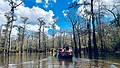Canoes at Cooks Lake (bf5e6dcd-82ee-4a70-a41f-342f9db85b30).jpg