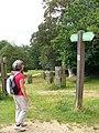 Capital Ring, Richmond Park - geograph.org.uk - 507428.jpg