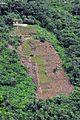 Caranavi field2 lo (4386251121).jpg