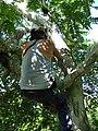 Carlos Magdalena Climbing Zanthoxylum.jpg