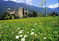 Castello di Fenis 2002.jpg