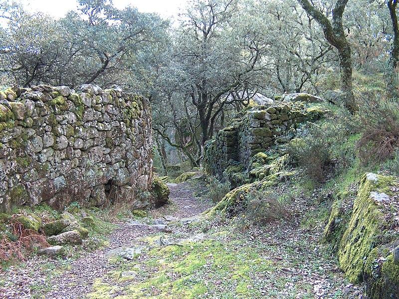 Image:Castelo de Faria1488.JPG