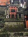 Cat in in Fushimi Inari-taisha.jpg