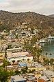 Catalina Island and Ensenada Cruise - panoramio (80).jpg